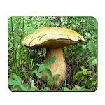 Giant Mushroom Mousepad