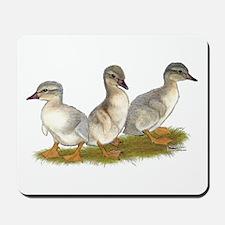 Saxony Ducklings Mousepad