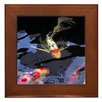 Fancy Koi Framed Tile