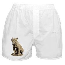 Vintage Pit Bull Boxer Shorts