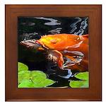 Red Koi Rising Framed Tile