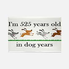 75 dog years birthday 2 Rectangle Magnet