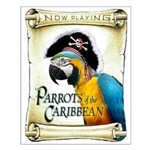 PARROTS of the CARIBBEAN Poster