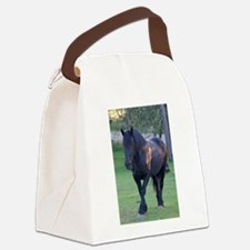 Black Percheron Mare at Pasture Canvas Lunch Bag