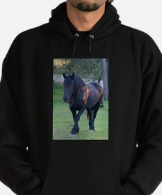 Black Percheron Mare at Pasture Hoodie