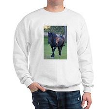 Black Percheron Mare at Pasture Sweatshirt