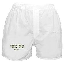 Unique Reporter Boxer Shorts