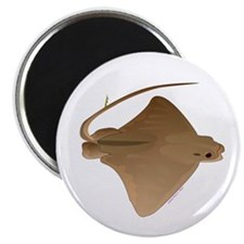 cownose ray f Magnet