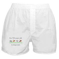 100 dog years birthday 1 Boxer Shorts