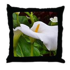 Blarney Castle flower, Ireland Throw Pillow
