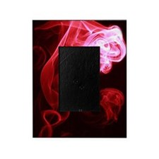 Spirit Red Picture Frame