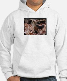 Maine Coon cat boots Hoodie