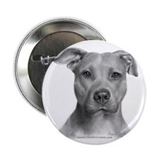 """American Pit Bull Terrier 2.25"""" Button (100 pack)"""