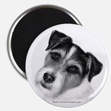 Jack (Parson) Russell Terrier Magnet