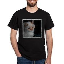 Kekoe, One Great Cat! T-Shirt