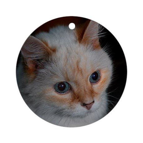 White Longhaired Cat: Kikoe Ornament (Round)