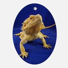 Bearded Dragon Ornament (Oval)