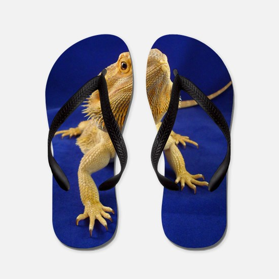 Bearded Dragon Flip Flops