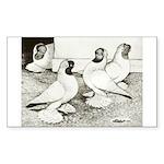 Moorhead Tumbler Pigeons Rectangle Sticker
