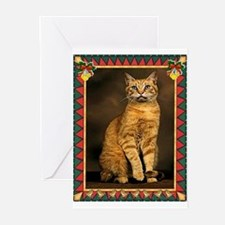 Red Tabby Cat Christmas Greeting Cards (Pk of 20)
