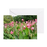 LONGWOOD GARDENS-Greeting Cards (Pk of 10)