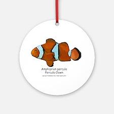 Percula Clown Ornament (Round)