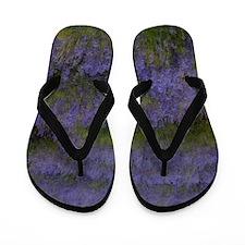 Lavender Land Flip Flops