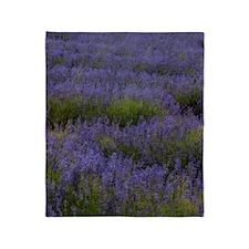 Lavender Land Throw Blanket