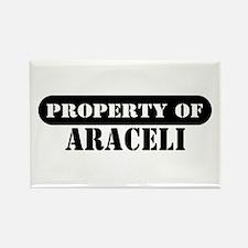 Property of Araceli Rectangle Magnet