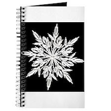Ice Crystal Journal