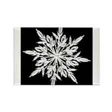 Ice Crystal Rectangle Magnet