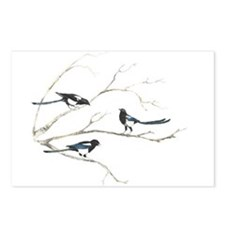 Watercolor Magpie Bird Family Animal Postcards (Pa