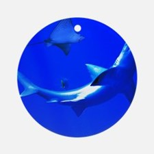 Shark and Stingray Ornament (Round)