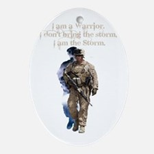Americans United: Warrior Storm Oval Ornament