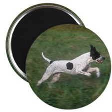 Jumping Pointer Magnet