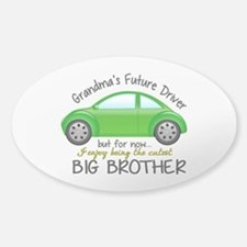 Big Brother - Car Decal