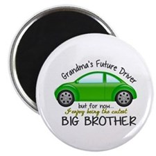 Big Brother - Car Magnet