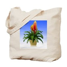 Bromeliad Potted Plant Tote Bag