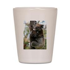 Australian Koala Mother and Baby Shot Glass