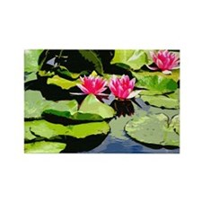 Waterlillies Rectangle Magnet