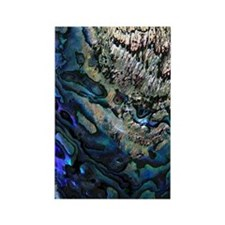 Abalone Rectangle Magnet