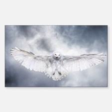 Funny Snowy owl Sticker (Rectangle)