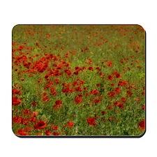 Poppy Landscape Mousepad