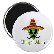Illegal Alien Magnet