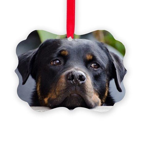 Rottweiler Dog Picture Ornament