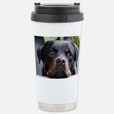 Rottweiler Dog Stainless Steel Travel Mug