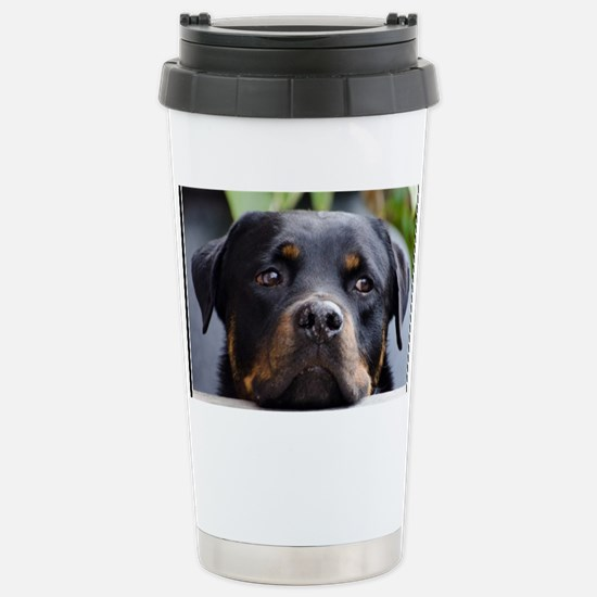 Rottweiler Dog Stainless Steel Travel Mug
