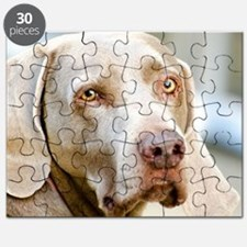 Weimaraner Puzzle