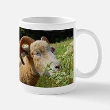 Contented Horned Dorset Sheep Mug