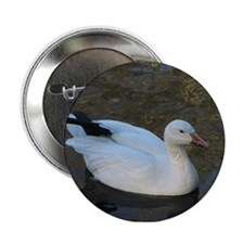 snow geese Button